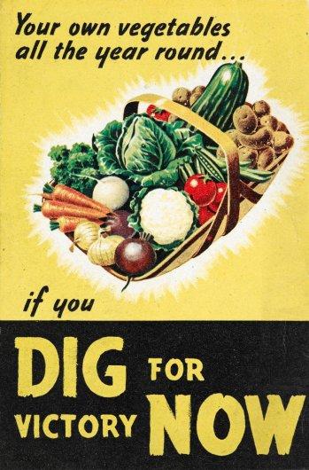 World War II Dig for Victory Propaganda Poster
